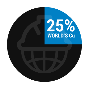 25% WORLD'S CUP